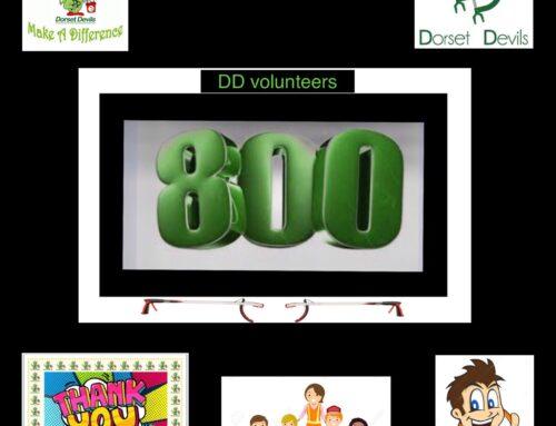 DD reaches 800